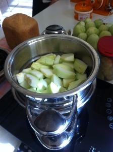 dovlecei pentru humus